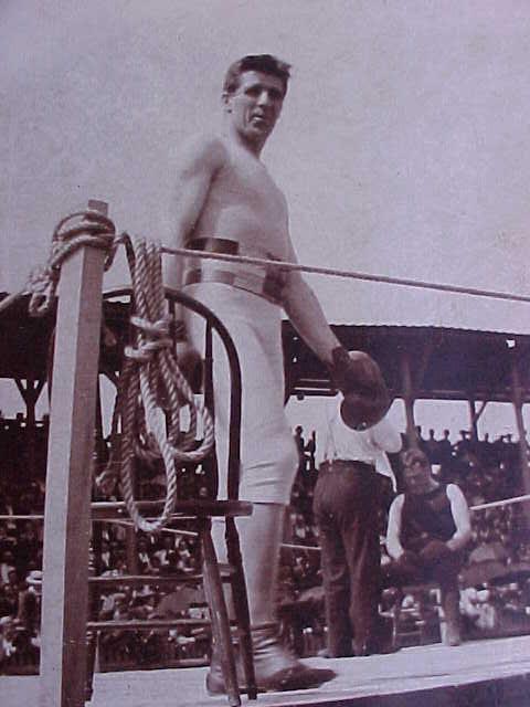 Irish American Boxers